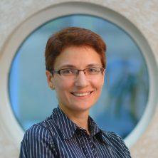 Alyona Balagura<span style='text-transform:none;'><br>FEA manager<br>info@dzst.com.ua</span>